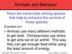animals and behavior74