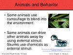 animals and behavior75