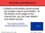 animals and behavior84