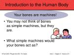 introduction to the human body12