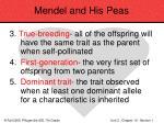 mendel and his peas24
