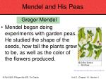mendel and his peas28