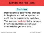 mendel and his peas42