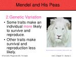 mendel and his peas53