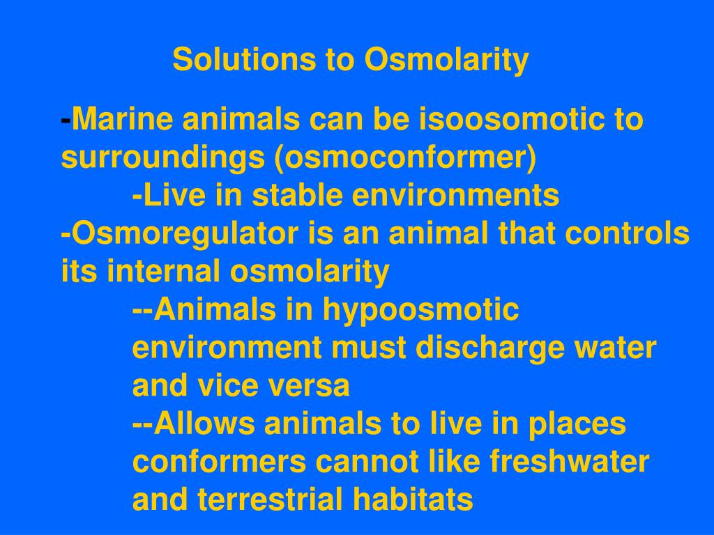 Solutions to Osmolarity