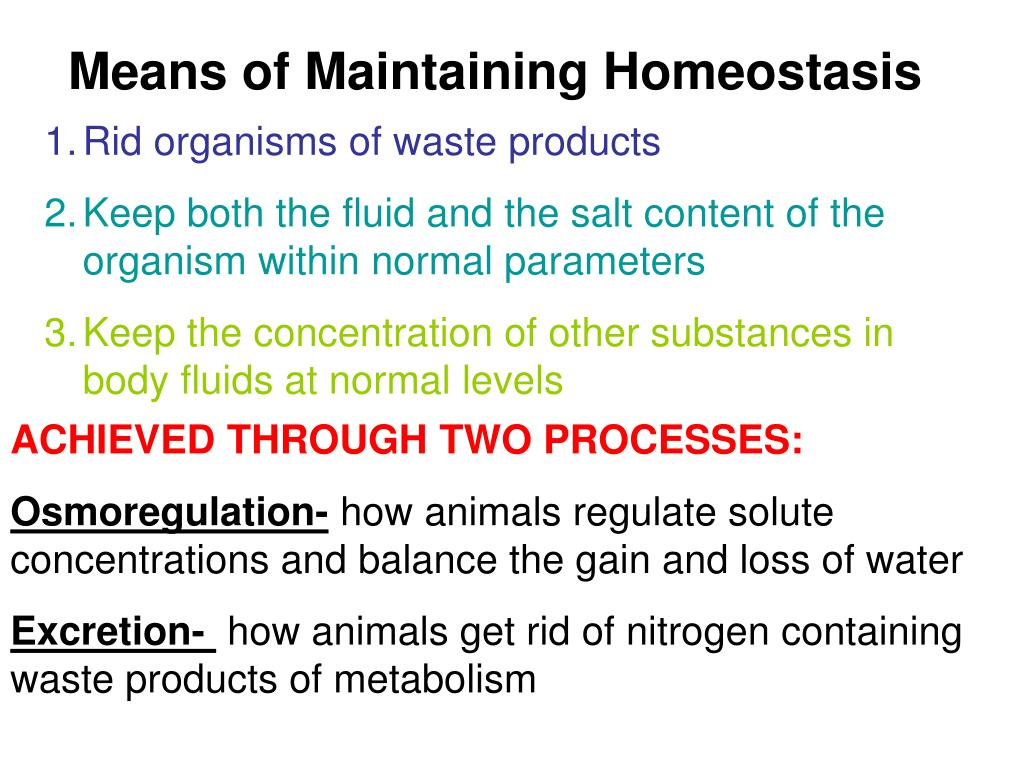 Means of Maintaining Homeostasis