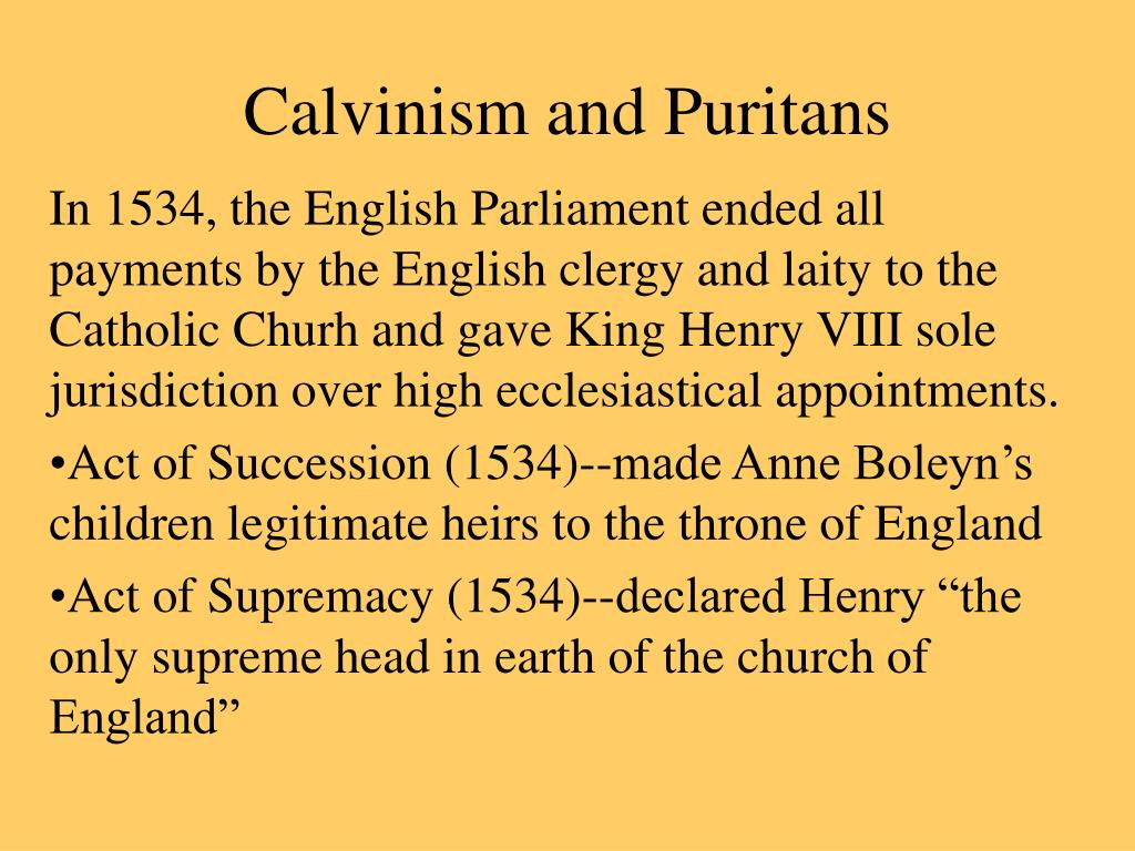 calvinism and puritans l.