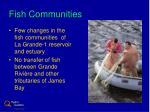 fish communities