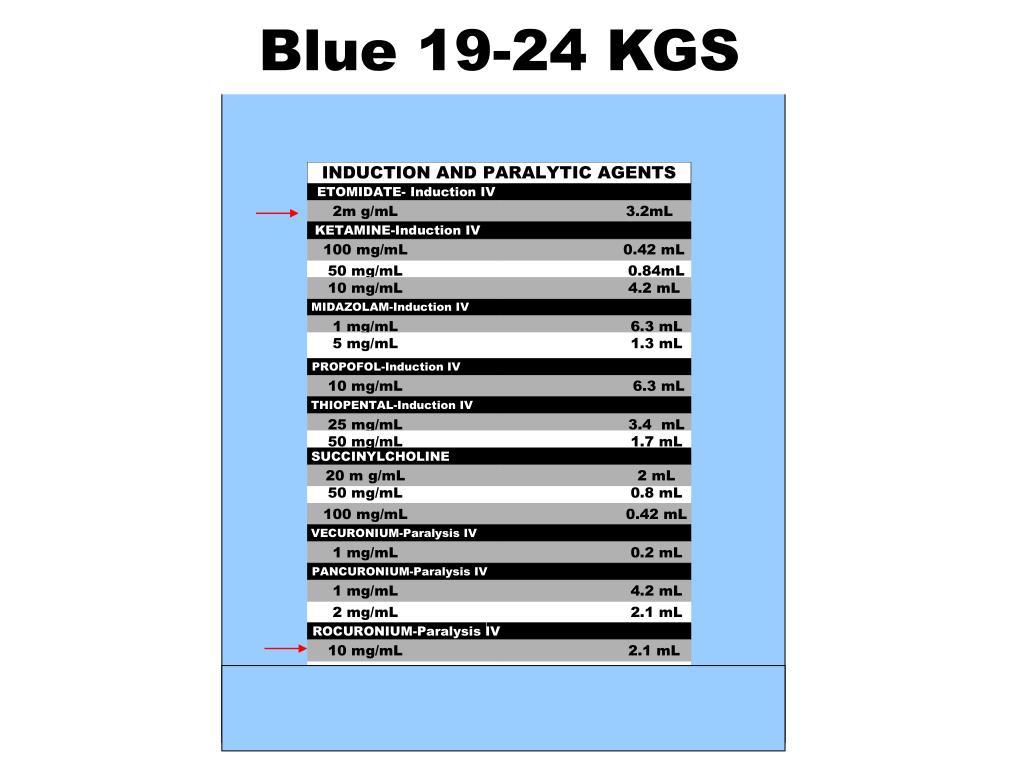 Blue 19-24 KGS
