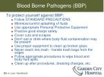 blood borne pathogens bbp1
