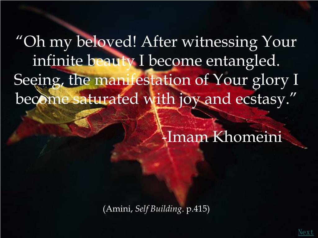 """""""Oh my beloved! After witnessing Your infinite beauty I become entangled."""