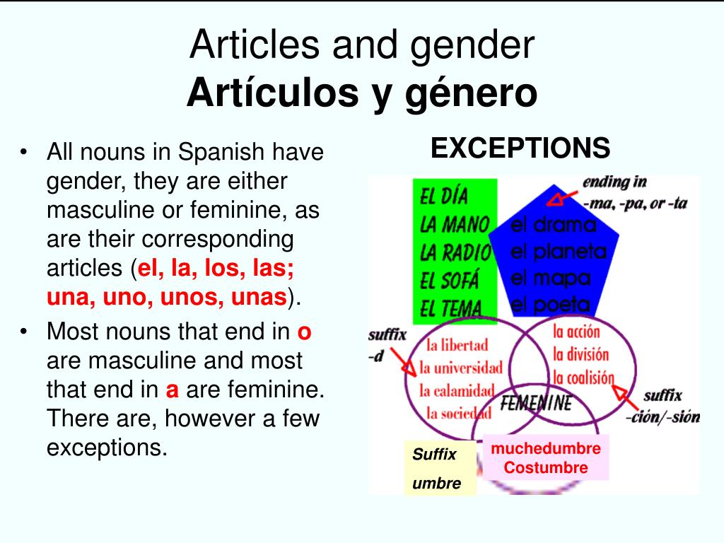 Articles and gender