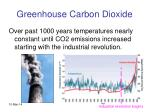 greenhouse carbon dioxide