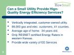 can a small utility provide high quality energy efficiency services