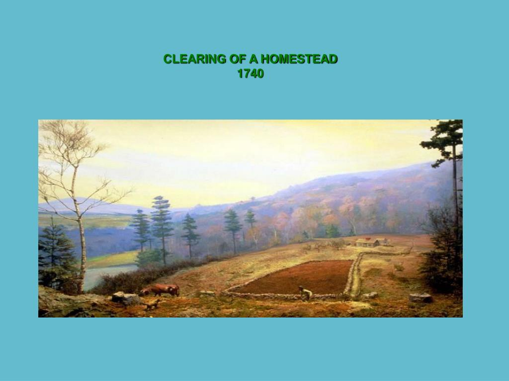 CLEARING OF A HOMESTEAD
