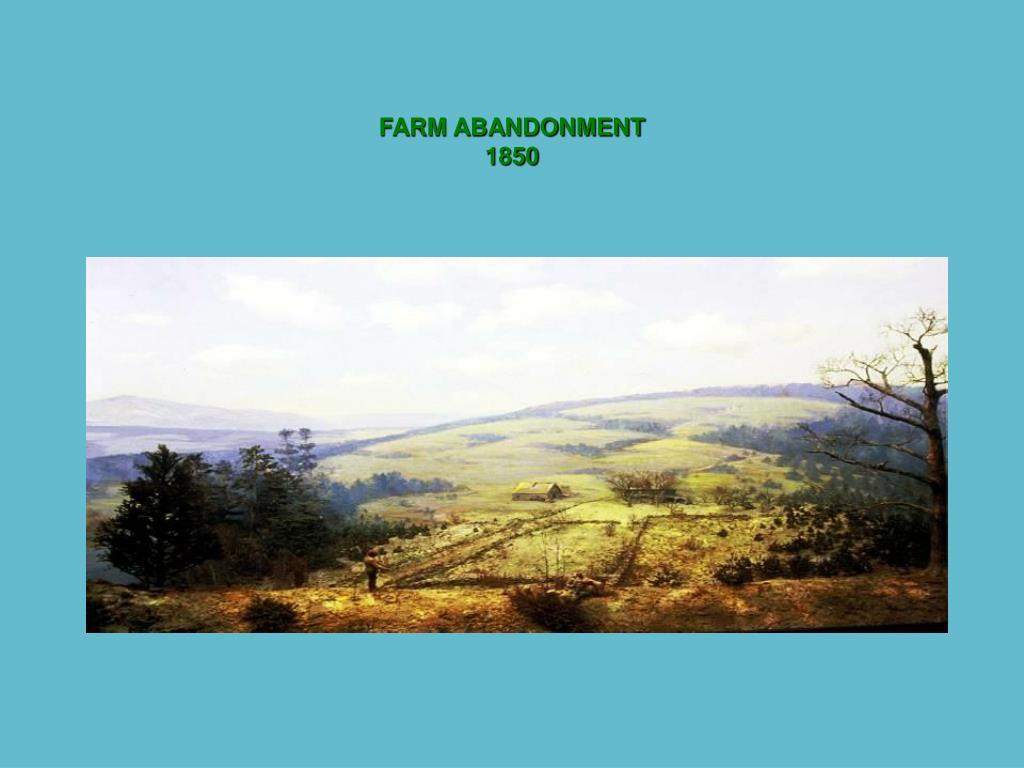 FARM ABANDONMENT