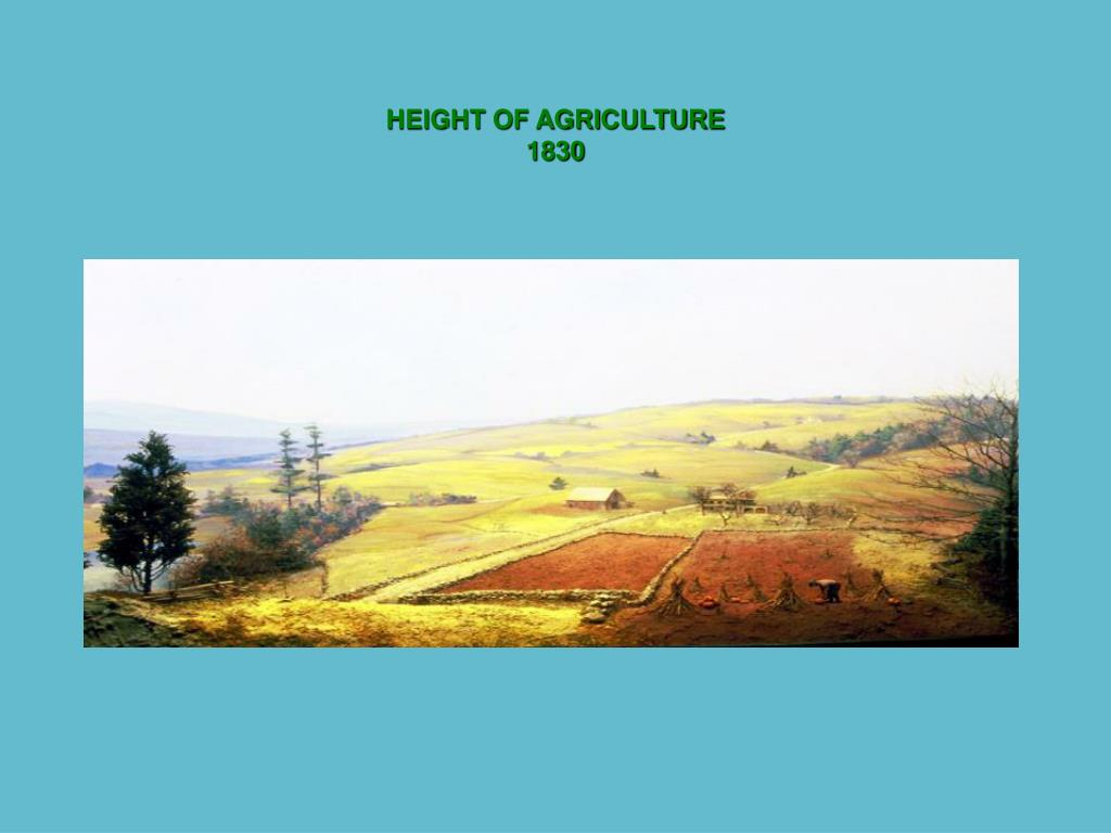 HEIGHT OF AGRICULTURE