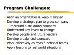 program challenges