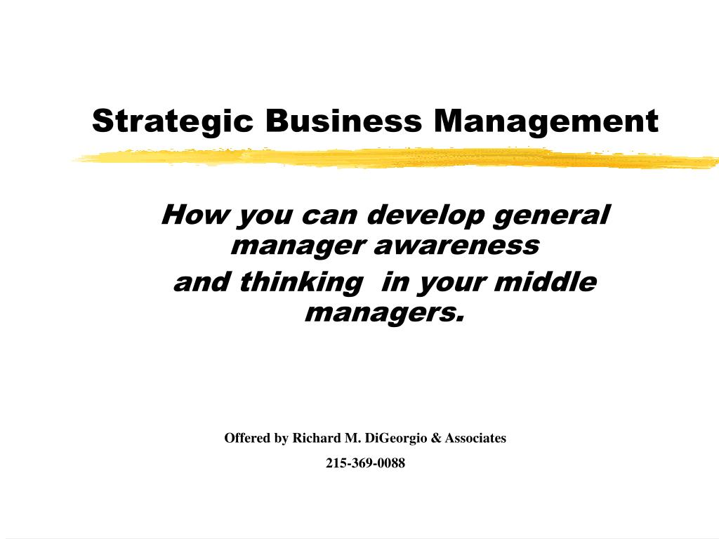 strategic business management l.