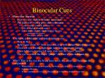 binocular cues1
