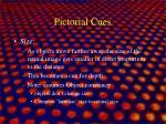 pictorial cues1