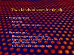 two kinds of cues for depth