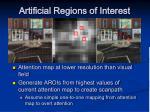 artificial regions of interest