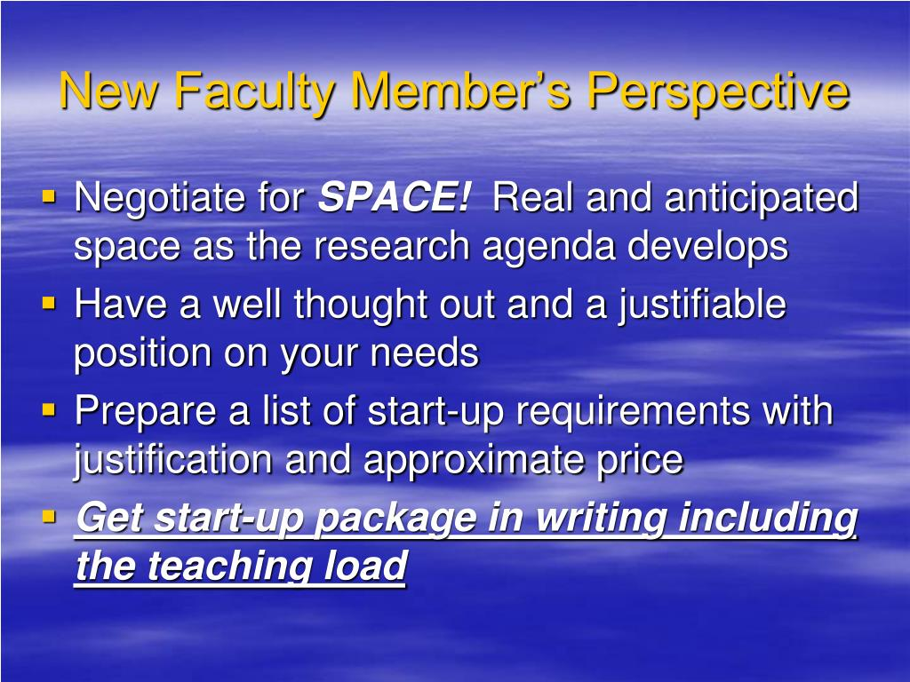 New Faculty Member's Perspective