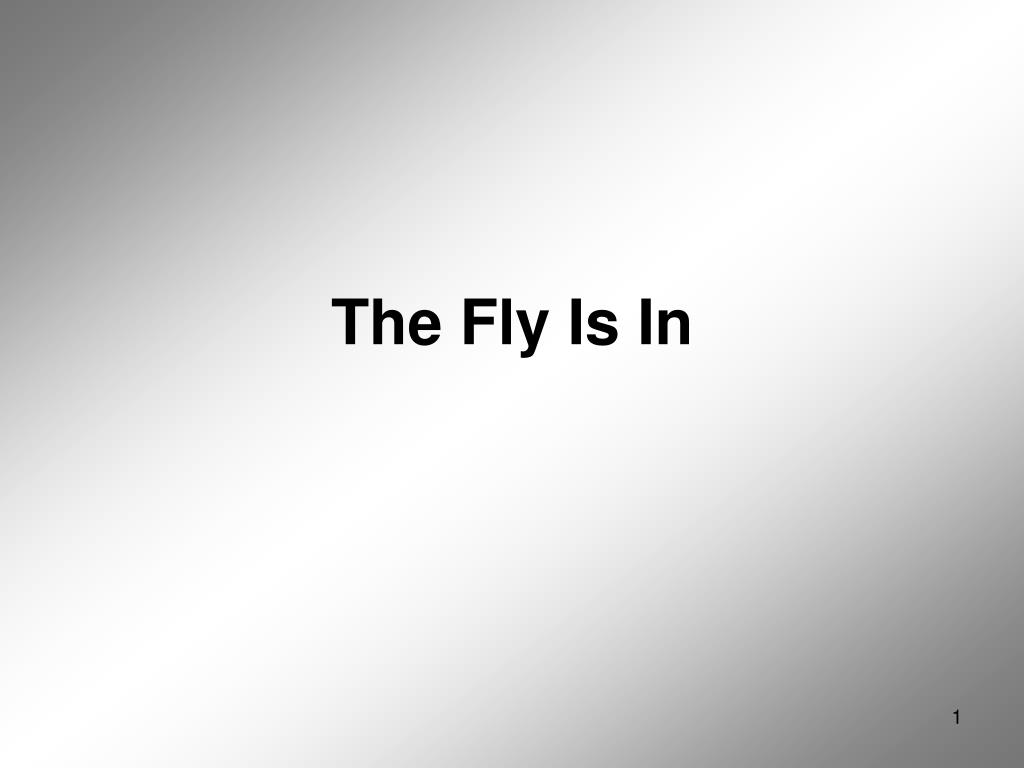 the fly is in l.