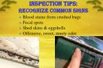 inspection tips recognize common signs