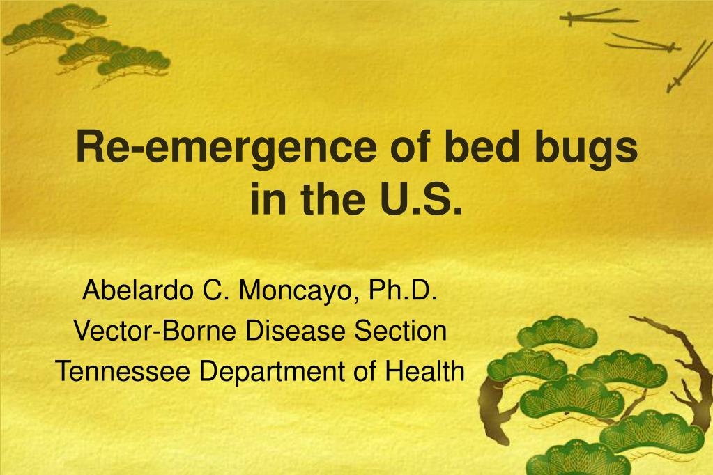 re emergence of bed bugs in the u s l.