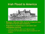 irish flood to america