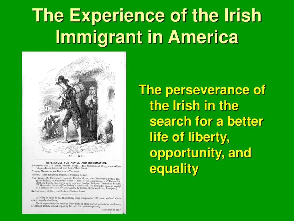 the experience of the irish immigrant in america l.