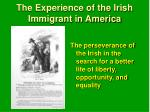 the experience of the irish immigrant in america