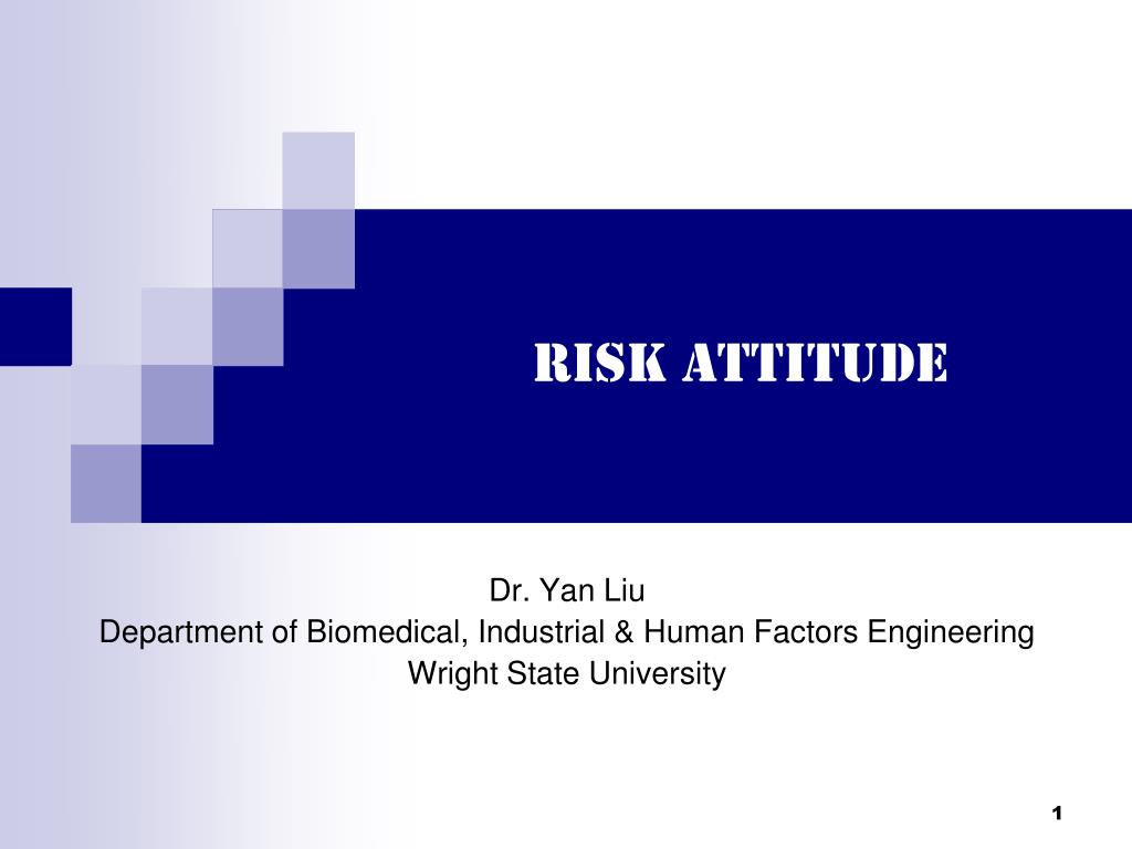 risk attitude l.