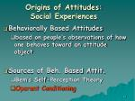 origins of attitudes social experiences40