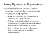 group dynamics in organizations22