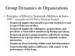 group dynamics in organizations30