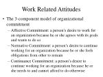 work related attitudes14