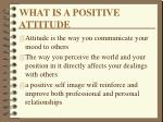 what is a positive attitude20