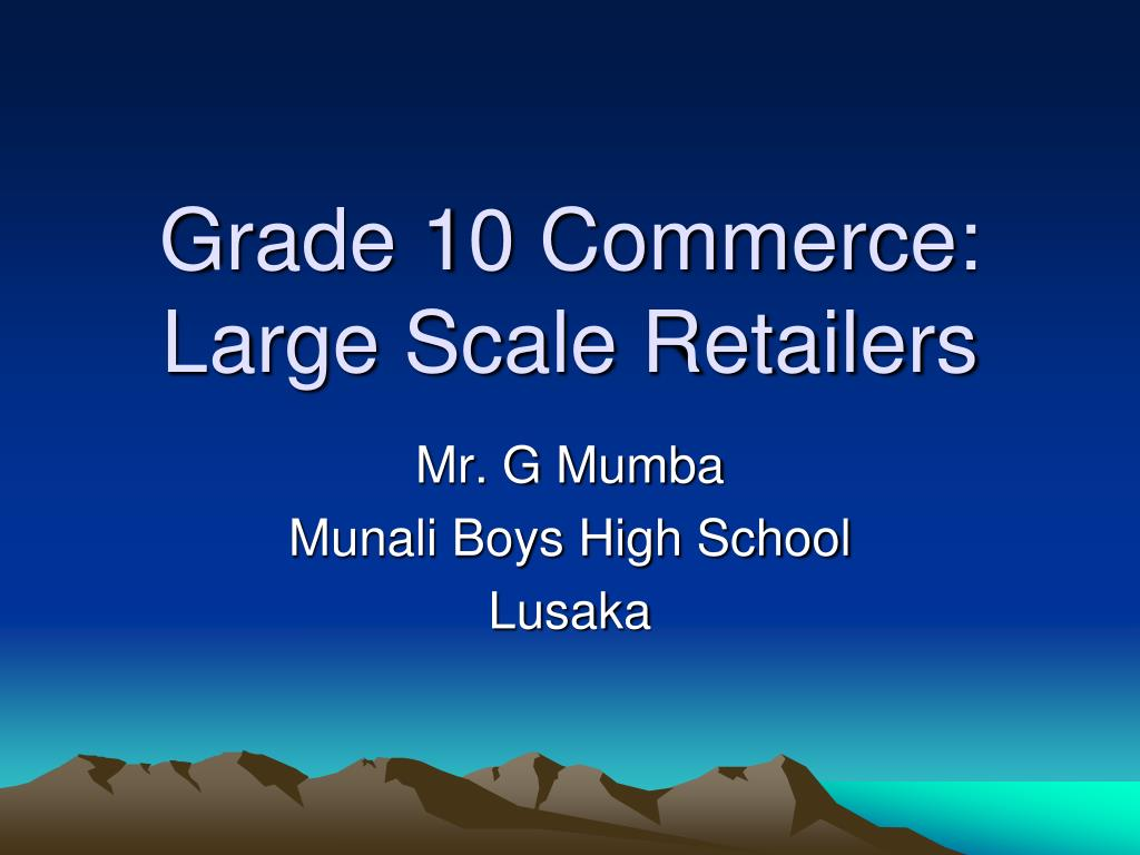 grade 10 commerce large scale retailers