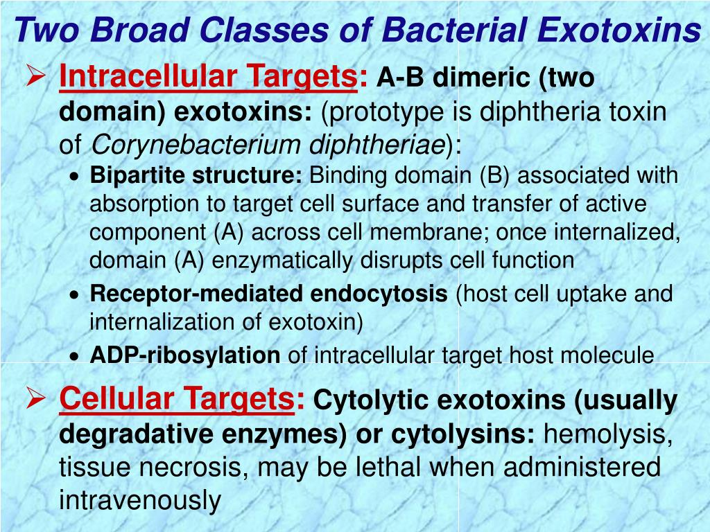 Two Broad Classes of Bacterial Exotoxins