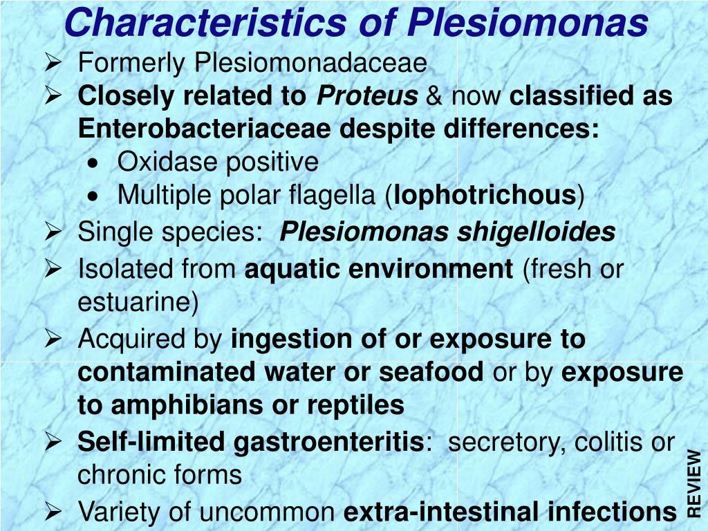 Characteristics of Plesiomonas