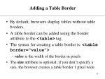 adding a table border