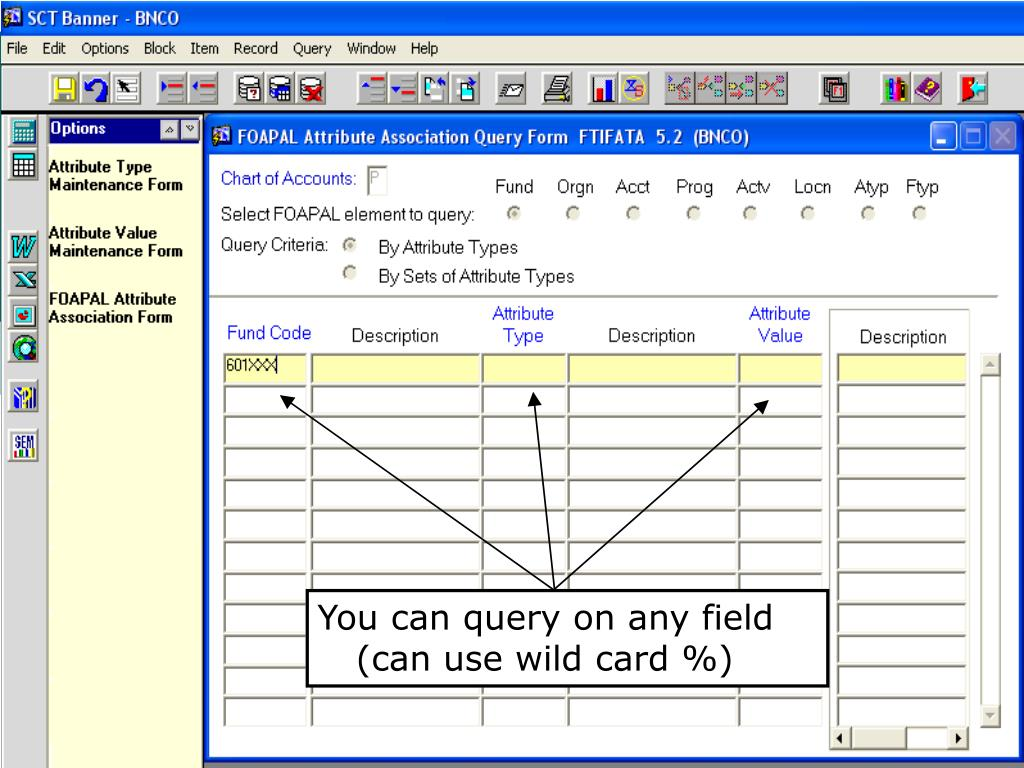 You can query on any field (can use wild card %)
