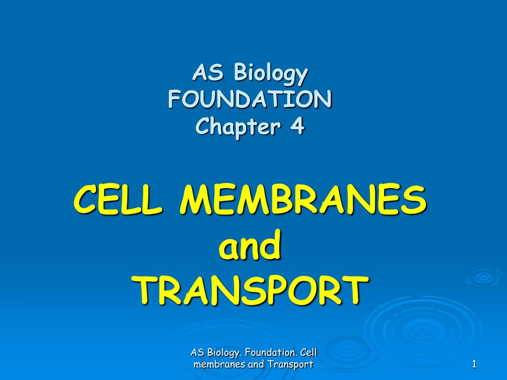 as biology foundation chapter 4 cell membranes and transport l.