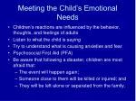meeting the child s emotional needs