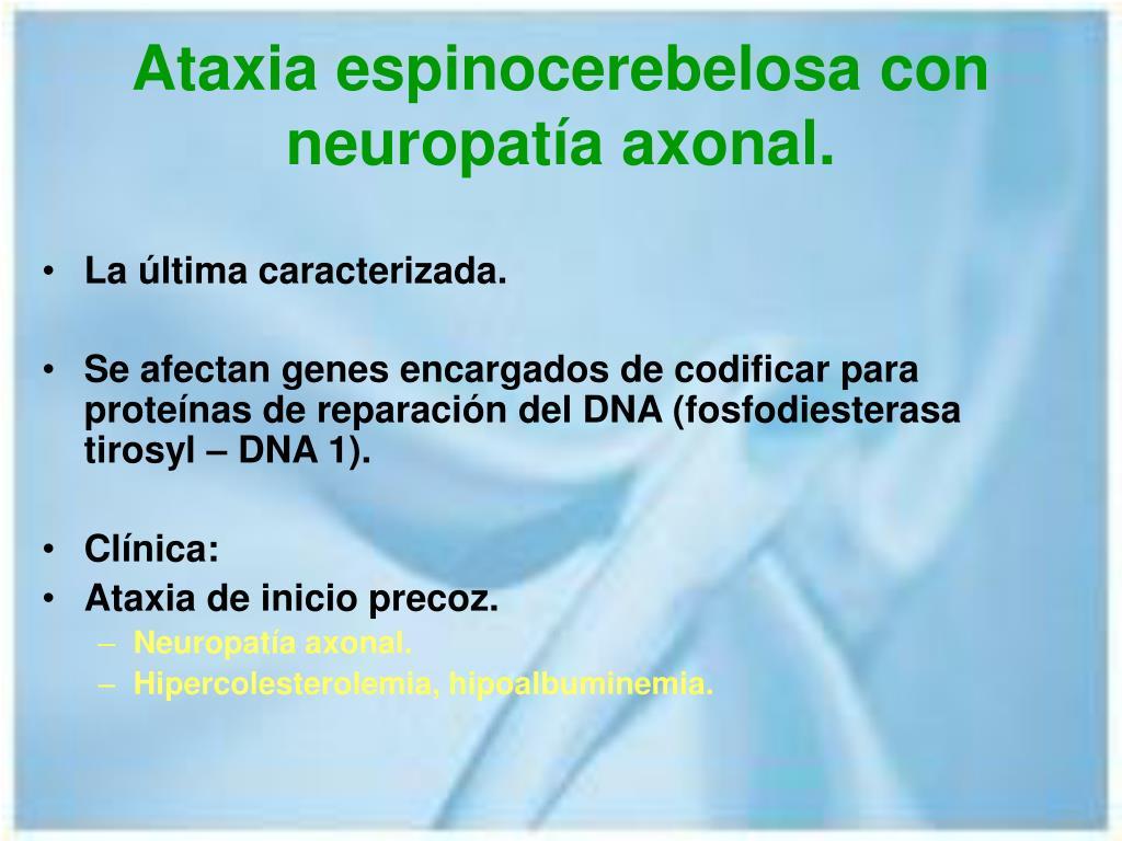 Ataxia espinocerebelosa con neuropatía axonal.