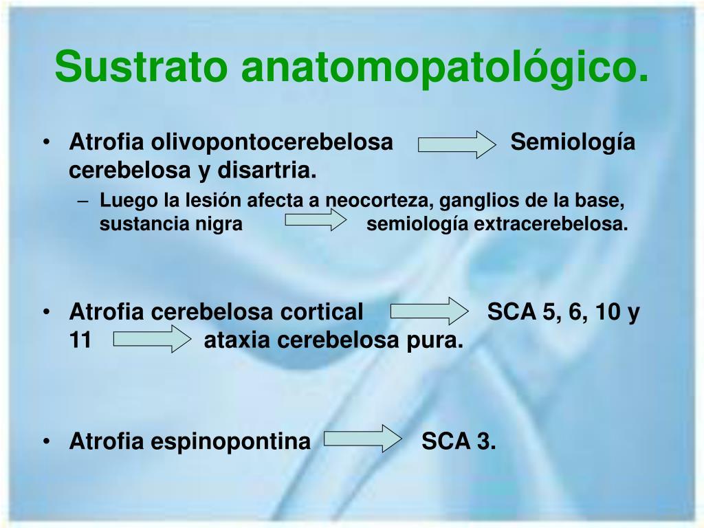 Sustrato anatomopatológico.