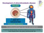 development of atherothrombotic disease
